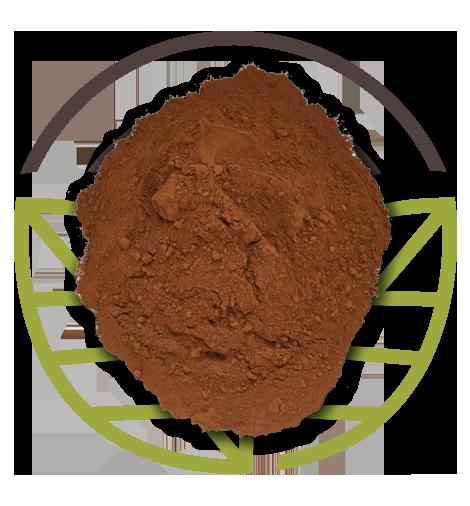 Bio-Clean Gas Power: additivo in polvere di Biocustom per impianti a biogas